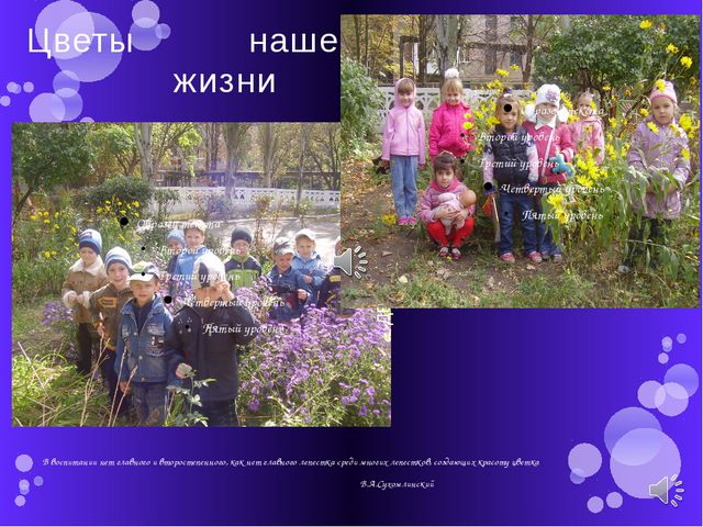 Цветы нашей жизни В воспитании нет главного и второстепенного, как нет главно...