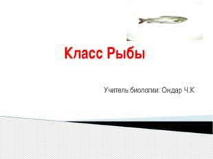 Класс Рыбы Учитель биологии: Ондар Ч.К
