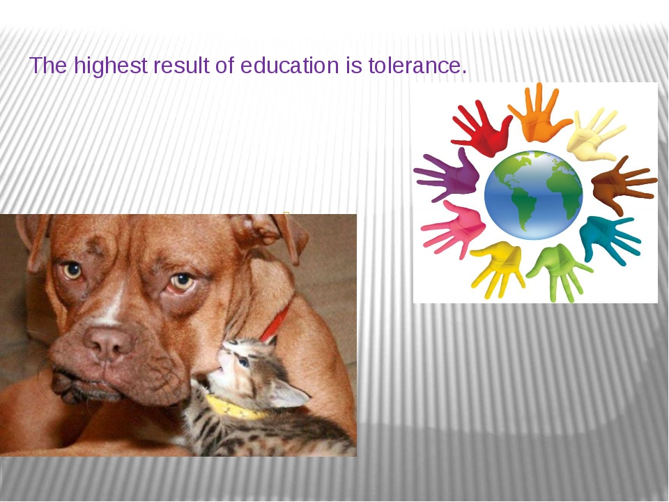 The highest result of education is tolerance. т