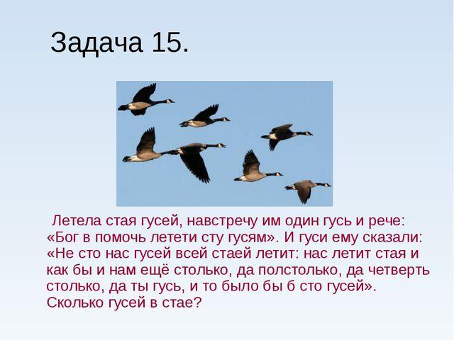 Задача 15. Летела стая гусей, навстречу им один гусь и рече: «Бог в помочь ле...