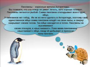 Пингвины – коренные жители Антарктиды. Вы помните, что эта птица не умеет ле