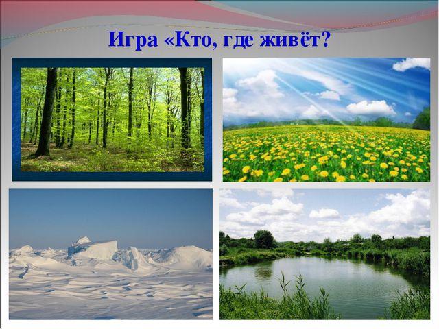 Игра «Кто, где живёт?