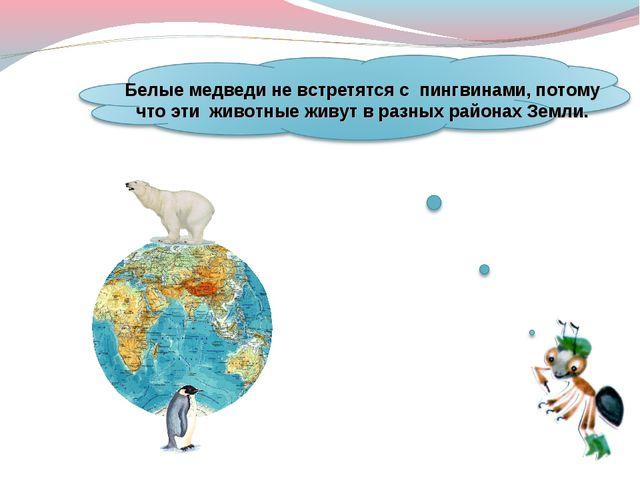 Белые медведи не встретятся с пингвинами, потому что эти животные живут вра...