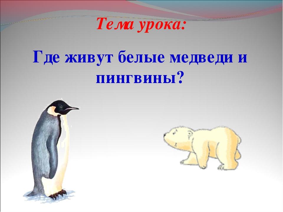 Тема урока: Где живут белые медведи и пингвины?