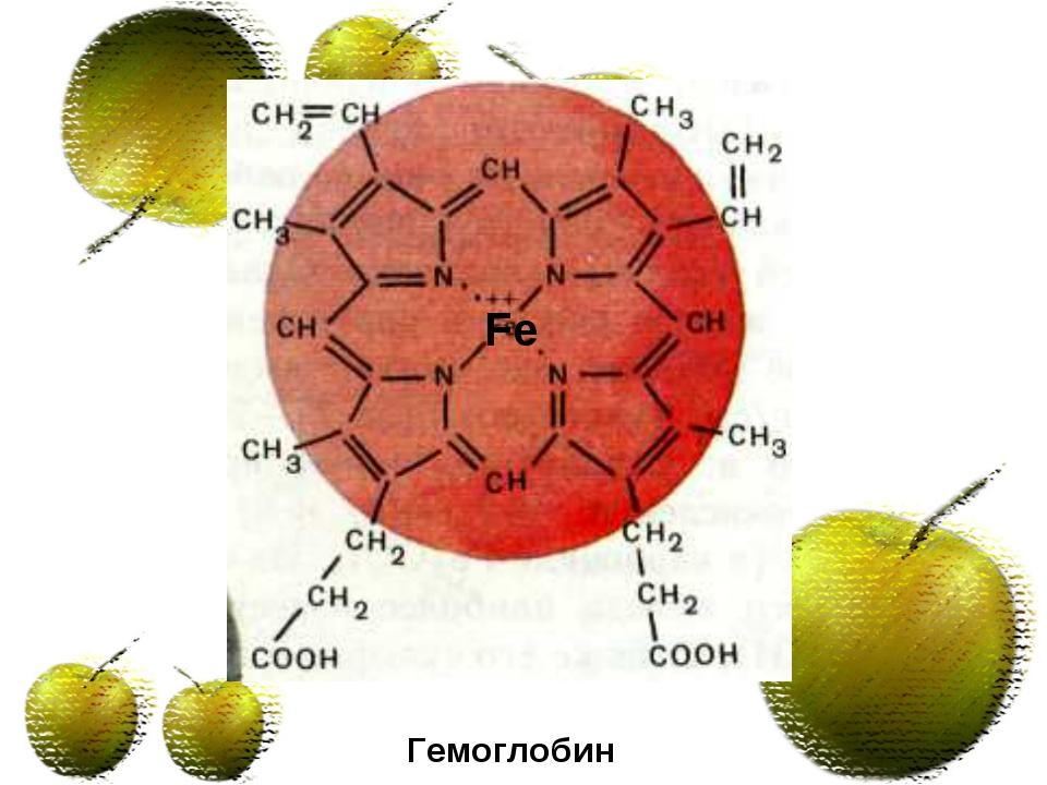 Гемоглобин Fe