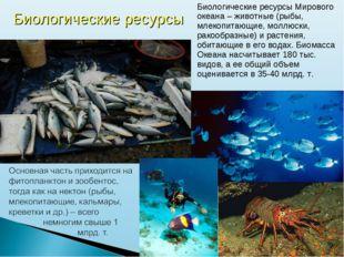 Биологические ресурсы Мирового океана – животные (рыбы, млекопитающие, моллюс