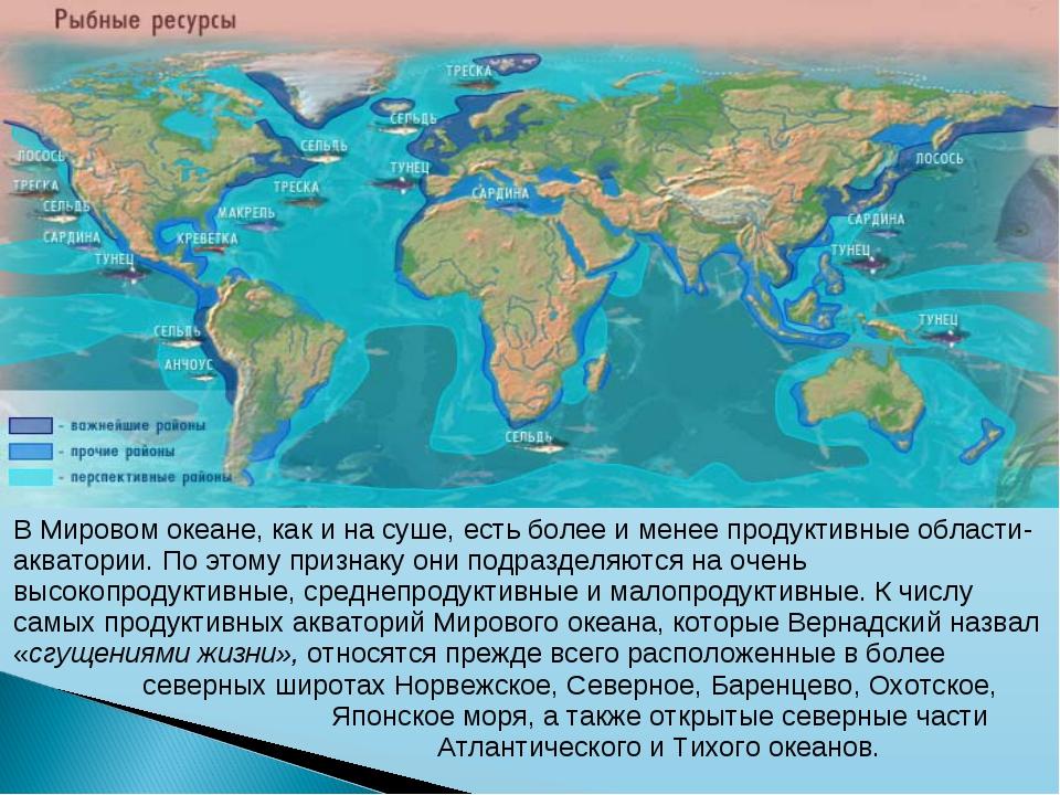 В Мировом океане, как и на суше, есть более и менее продуктивные области-аква...