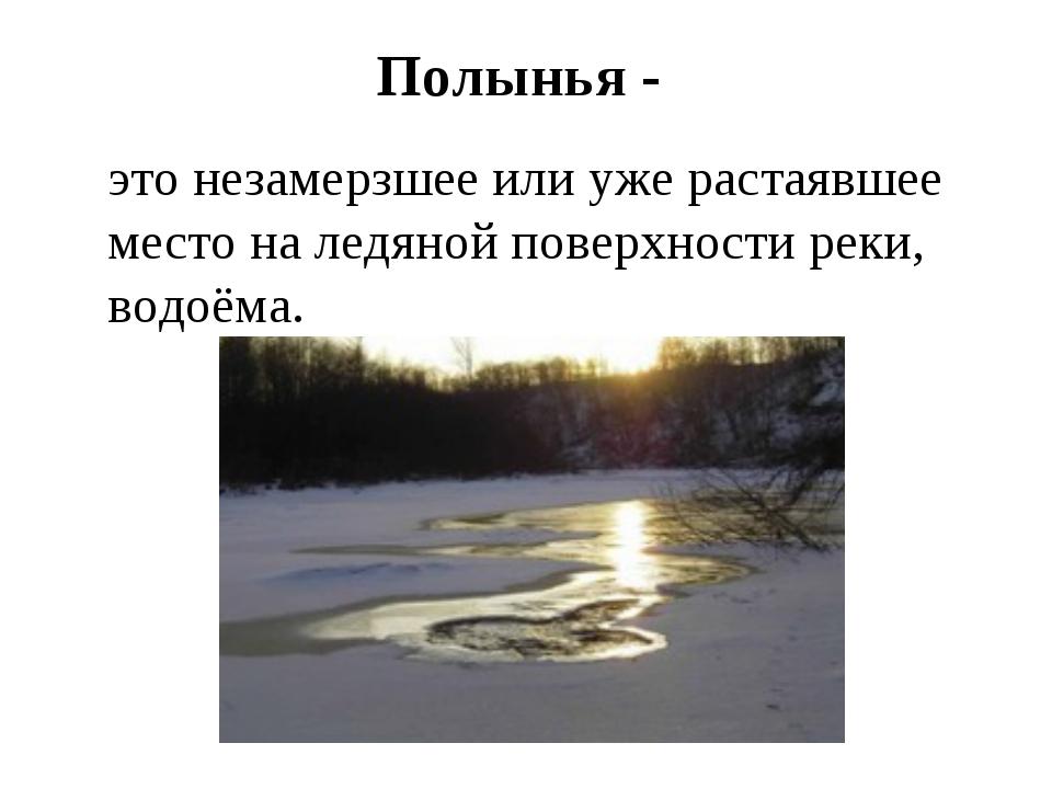 Полынья - это незамерзшее или уже растаявшее место на ледяной поверхности ре...