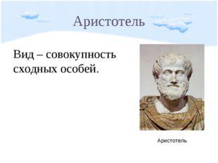 Аристотель Вид – совокупность сходных особей. Аристотель