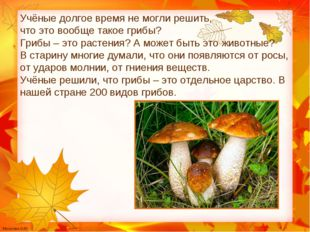 Учёные долгое время не могли решить, что это вообще такое грибы? Грибы – это