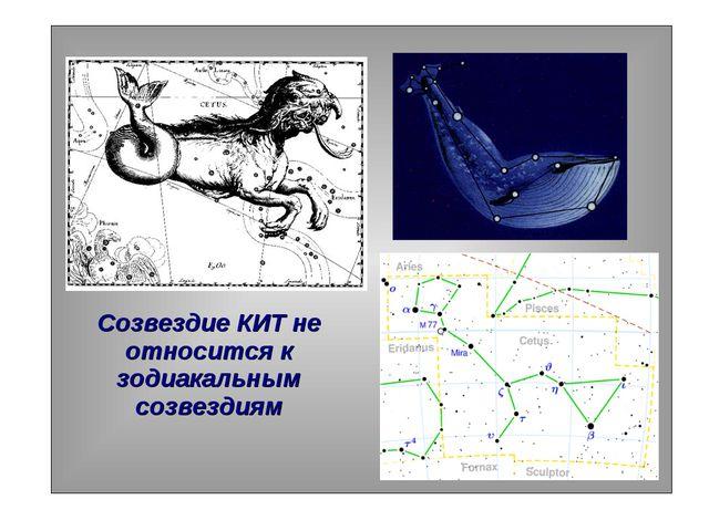Созвездие КИТ не относится к зодиакальным созвездиям