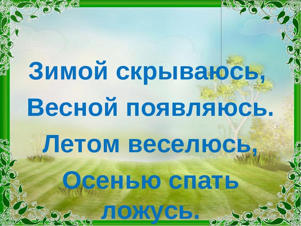 Зимой скрываюсь, Весной появляюсь. Летом веселюсь, Осенью спать ложусь.