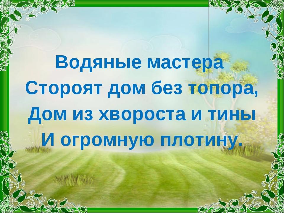 Водяные мастера Стороят дом без топора, Дом из хвороста и тины И огромную пло...
