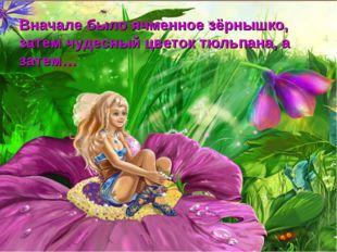 с Вначале было ячменное зёрнышко, затем чудесный цветок тюльпана, а затем…