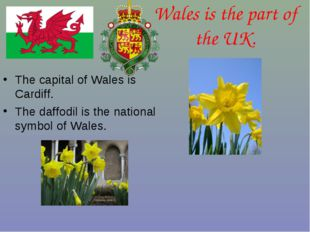 Wales is the part of the UK. The capital of Wales is Cardiff. The daffodil is
