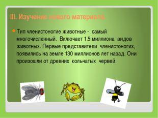 III. Изучение нового материала. Тип членистоногие животные - самый многочисл