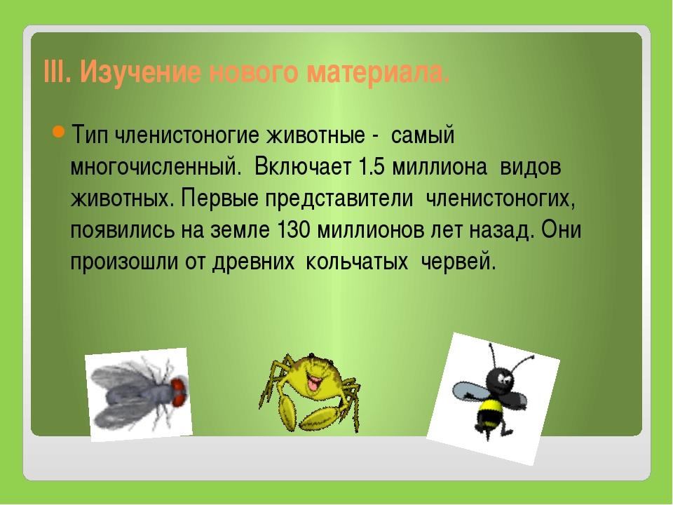 III. Изучение нового материала. Тип членистоногие животные - самый многочисл...