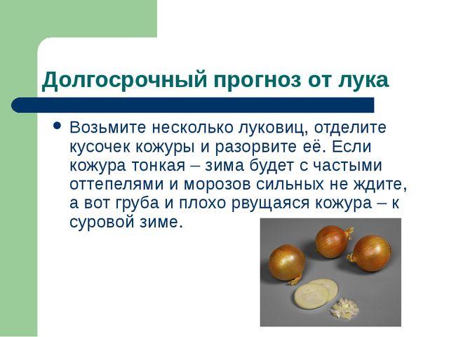 Долгосрочный прогноз от лука Возьмите несколько луковиц, отделите кусочек кож...