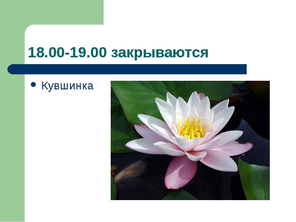 18.00-19.00 закрываются Кувшинка