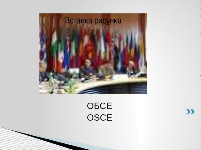 ОБСЕ OSCE