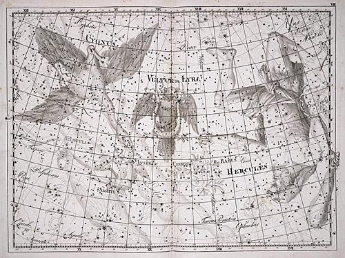 Созвездие Лебедь из Атласа Uranographia Яна Гевелия (1690)