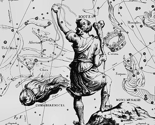 Созвездие Волопас из Атласа Uranographia Яна Гевелия (1690)