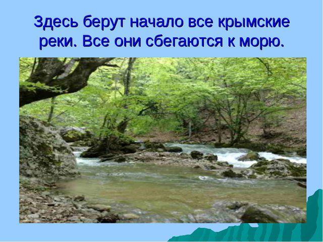 Здесь берут начало все крымские реки. Все они сбегаются к морю.