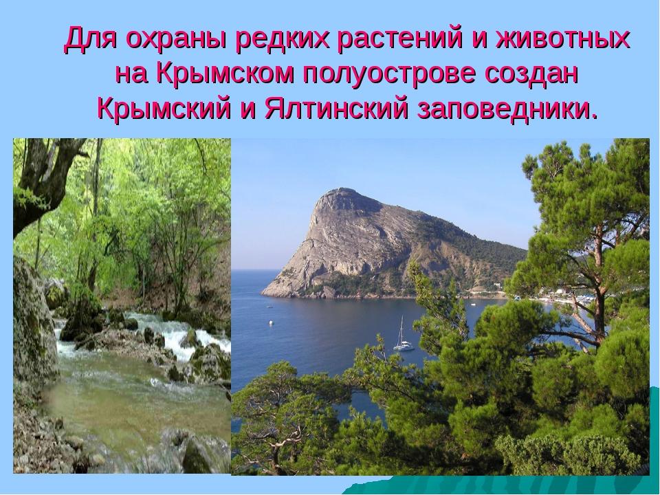 Для охраны редких растений и животных на Крымском полуострове создан Крымский...