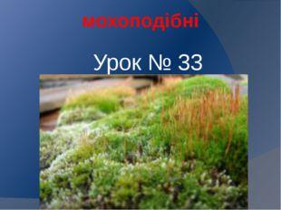мохоподібні Урок № 33
