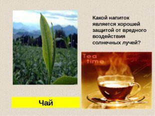 Какой напиток является хорошей защитой от вредного воздействия солнечных луч