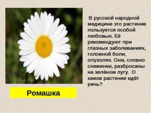 В русской народной медицине это растение пользуется особой любовью. Её реком