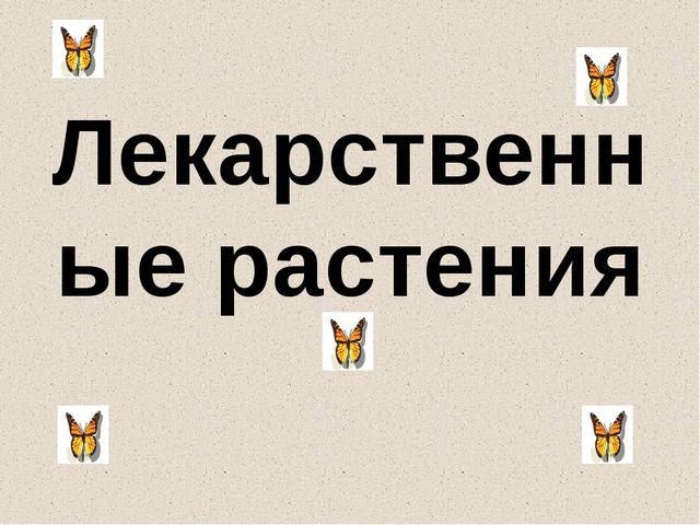 Лекарственные растения Алдабергенова Ж.Ш.