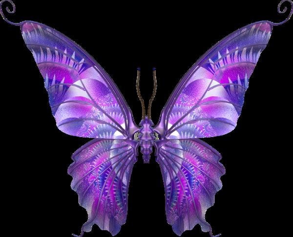 бабочка1.png