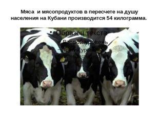 Мяса и мясопродуктов в пересчете на душу населения на Кубани производится 54
