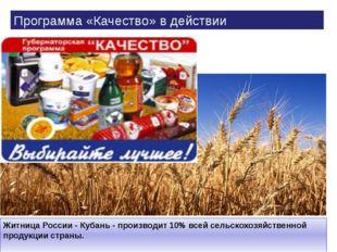 Житница России - Кубань - производит 10% всей сельскохозяйственной продукции