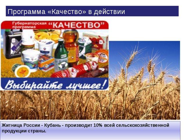 Житница России - Кубань - производит 10% всей сельскохозяйственной продукции...