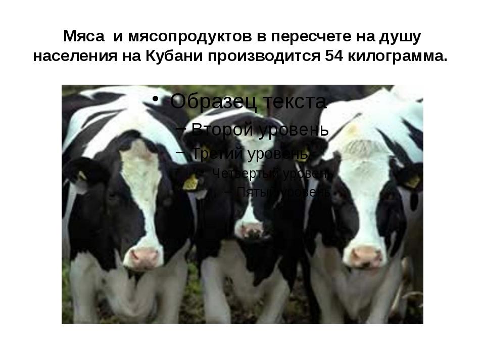 Мяса и мясопродуктов в пересчете на душу населения на Кубани производится 54...
