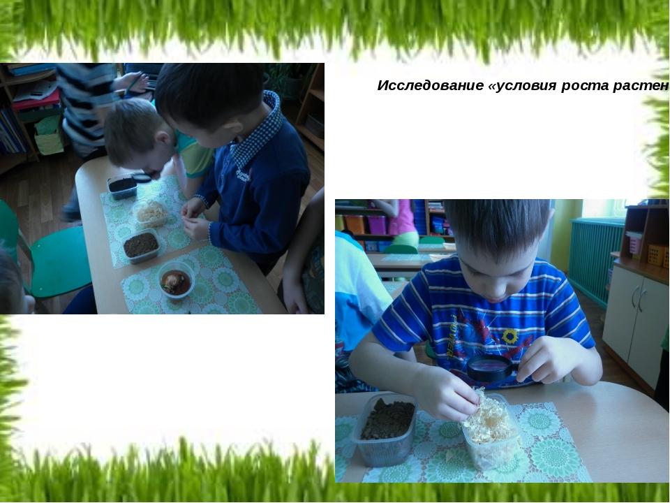 Исследование «условия роста растений»