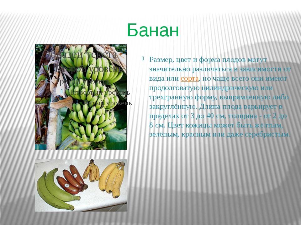 Банан Размер, цвет и форма плодов могут значительно различаться в зависимости...