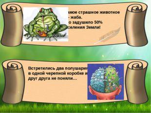 Самое страшное животное … - жаба. Оно задушило 50% населения Земли! Встретил