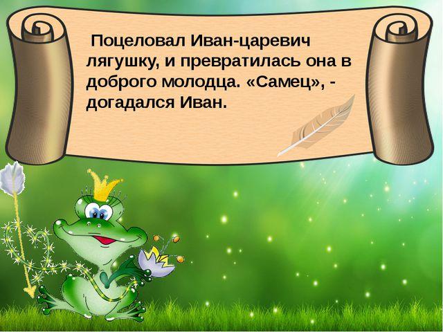 Поцеловал Иван-царевич лягушку, и превратилась она в доброго молодца. «Самец...