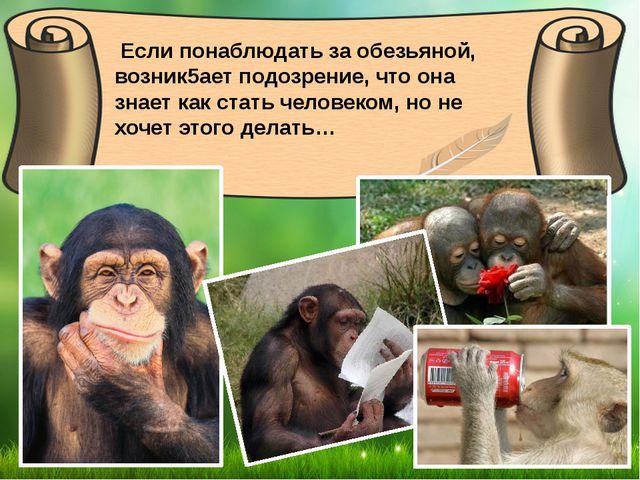 Если понаблюдать за обезьяной, возник5ает подозрение, что она знает как стат...