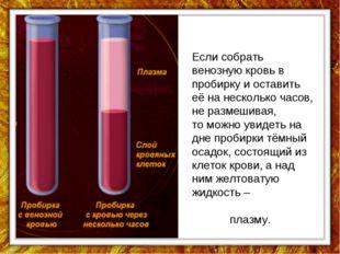 Если собрать венозную кровь в пробирку и оставить её на несколько часов, не р