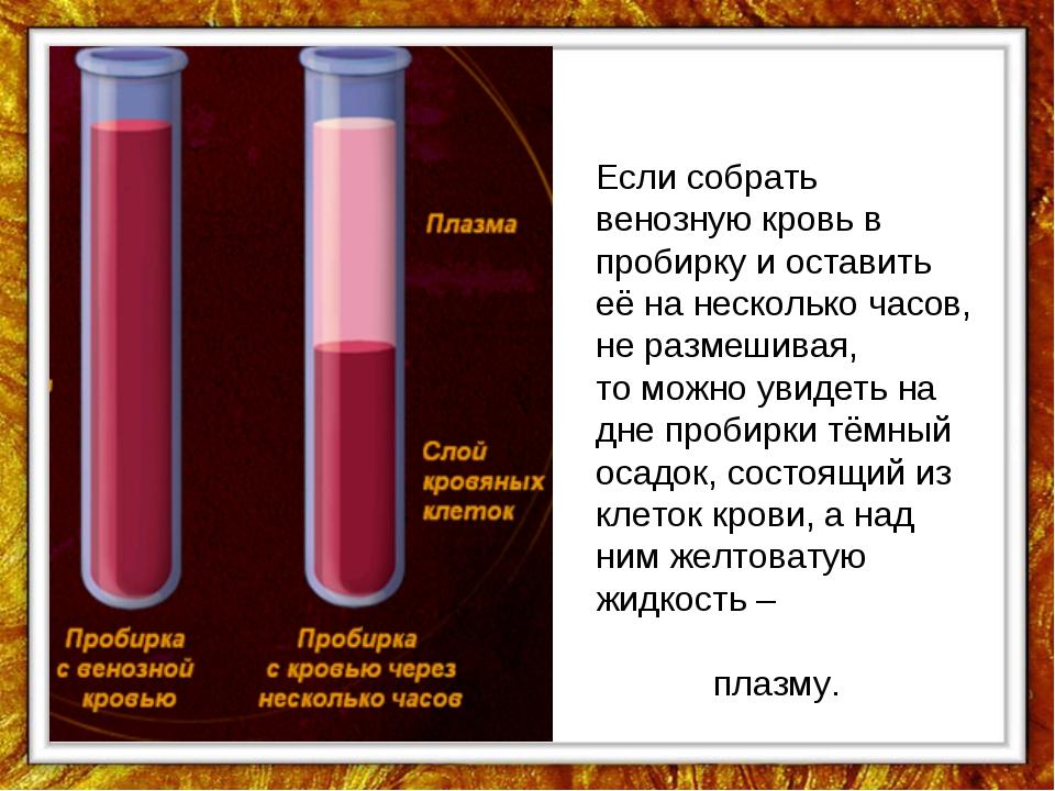 Если собрать венозную кровь в пробирку и оставить её на несколько часов, не р...