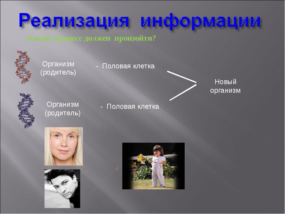 Какой процесс должен произойти? Организм (родитель) Организм (родитель) - Пол...