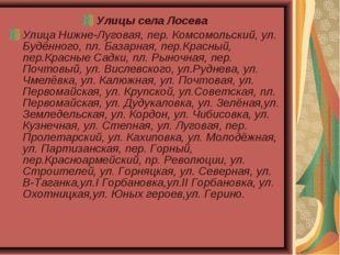 Улицы села Лосева Улица Нижне-Луговая, пер. Комсомольский, ул. Будённого, пл.