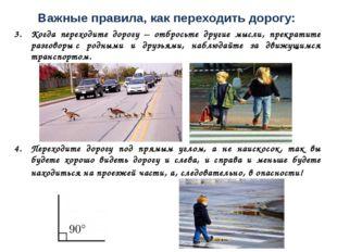 Важные правила, как переходить дорогу: Когда переходите дорогу – отбросьте др