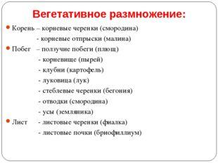 Вегетативное размножение: Корень – корневые черенки (смородина) - корневые от