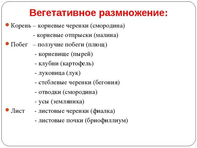 Вегетативное размножение: Корень – корневые черенки (смородина) - корневые от...