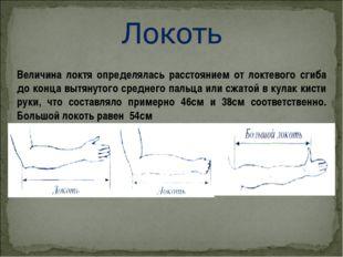 Величина локтя определялась расстоянием от локтевого сгиба до конца вытянутог